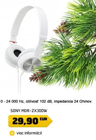MDR-ZX300W