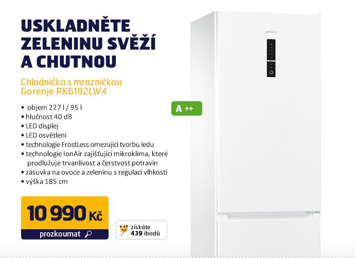 Chladnička s mrazničkou Gorenje RK6192LW4