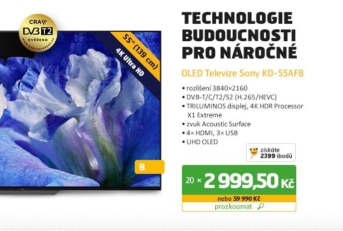 OLED Televize Sony KD-55AF8