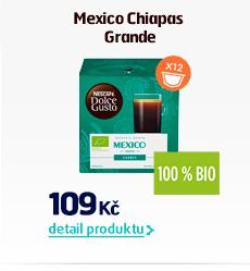 Mexico Chiapas Grande