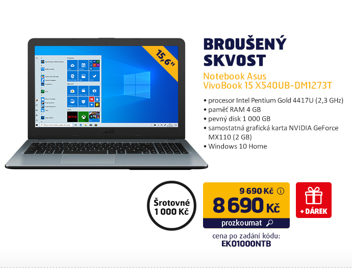 Notebook Asus VivoBook 15 X540UB-DM1273T